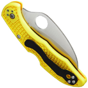 Spyderco Tasman Salt 2 Folding Knife